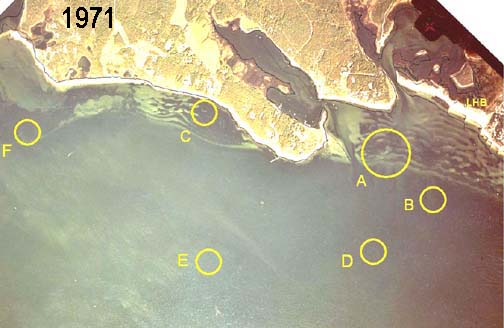Aerial view of Great Neck taken September 1971