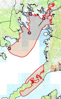 Colonial bird feeding areas in Buzzards Bay