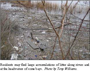 Litter along the coast of New Bedford