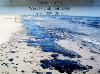 Number 6 Fuel oil washes ashore at West Island, Fairhaven, B120 oil spill